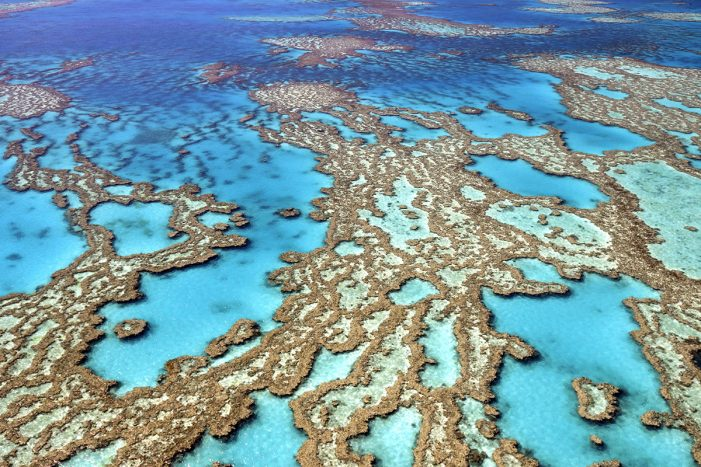 Australia's A$60 million plan for Great Barrier Reef won't work