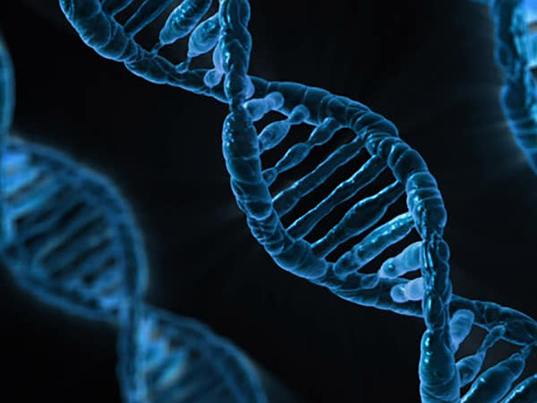 How the most common DNA mutation happens