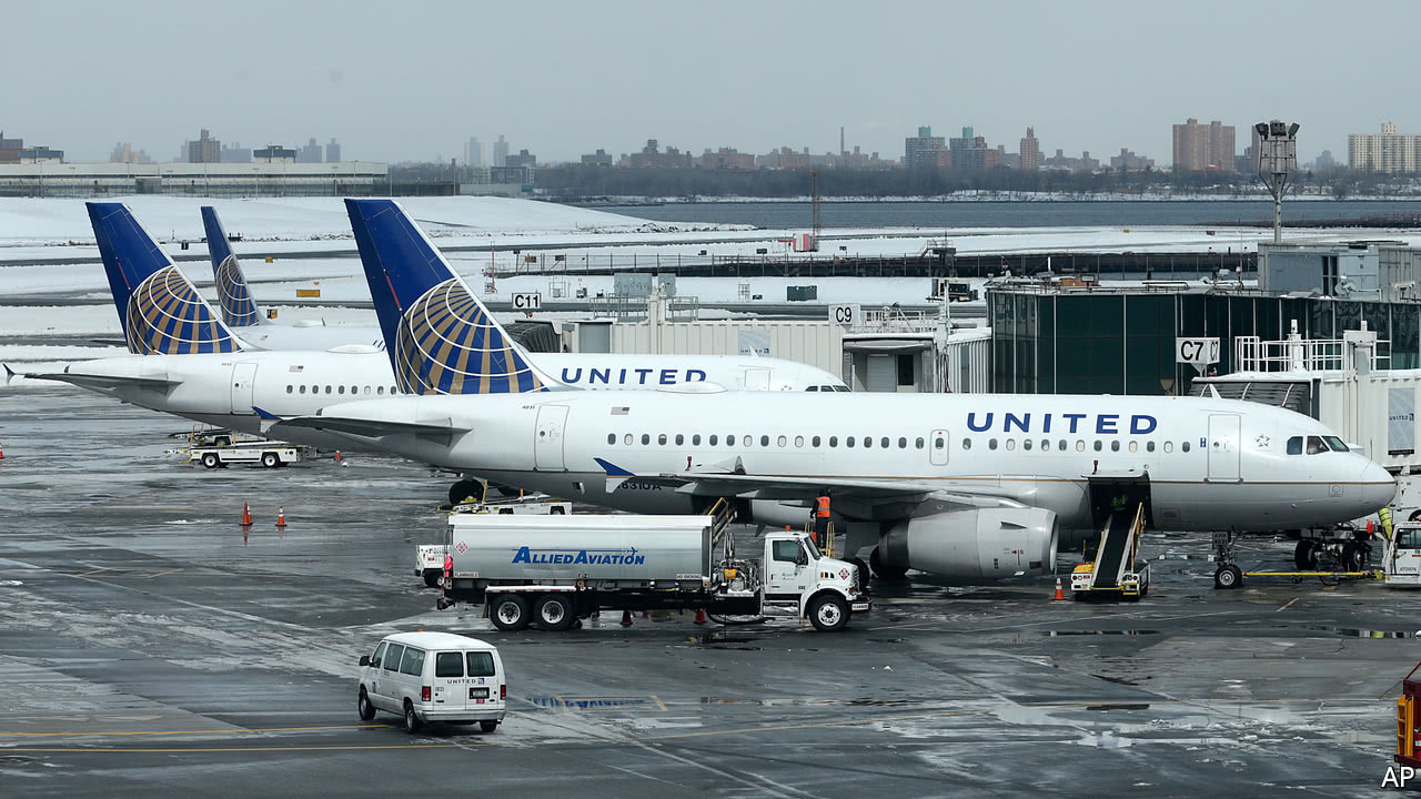 United Airlines kills another pet