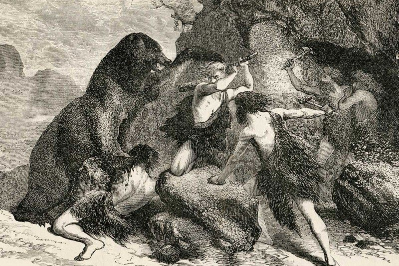 Neanderthals ambushed cave bears as they awoke from hibernation