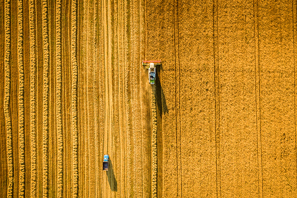 Satellites, supercomputers and machine learning provide real-time crop type data