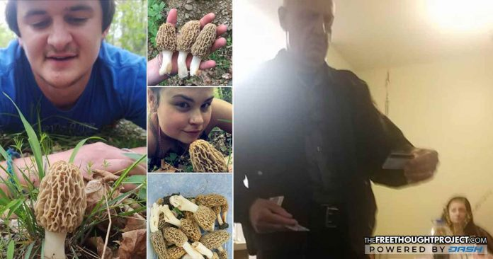 Innocent Couple Raided by Cops for Facebook Post of LEGAL Morel Mushrooms