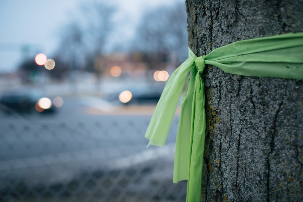 Willowbrook, Illinois -- Thursday, February 22, 2019Gabriela Tejeda-Rios's tree displays a green ribbon as a way to show support for the Stop Sterigenics effort. Her home is 0.2 miles from the Sterigenics plant that has been emitting a carcinogenic chemical called ethylene oxide.From the story:The people living in Willowbrook, Illinois, were understandably horrified to learn that they face an elevated risk of cancer due to air pollution. According to the Environmental Protection Agency's most recent National Air Toxics Assessment, which was released in August, the residents of eight census tracts in the Chicago suburb and the surrounding area in DuPage County had a more than 100 in a million risk of getting cancer from air pollution. The primary culprit was a chemical called ethylene oxide, a colorless gas that emanated from a local plant owned by a company called Sterigenics. The chemical has been shown to cause reproductive problems, respiratory tract irritation, headaches, memory loss and certain cancers, including leukemia, Hodgkin's disease, and breast cancer.
