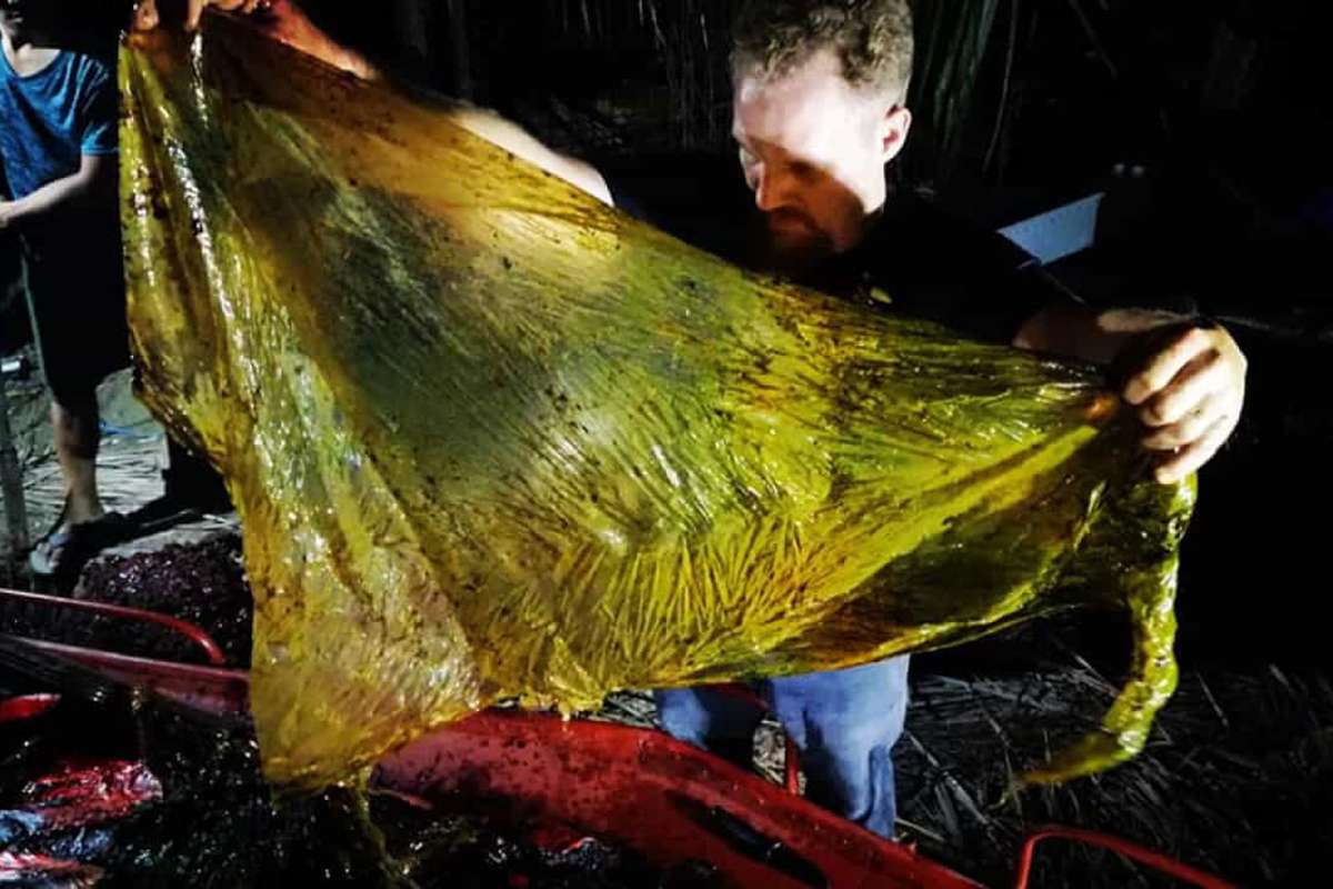 A rice sack found inside the dead whale
