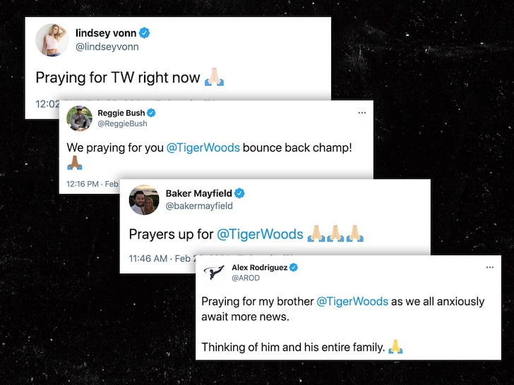 Stars Send Thoughts And Prayers After Tiger Woods Crash